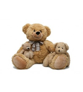 http://www.peluche-doudou.fr/11-53-thickbox/maman-ours-et-ses-oursons.jpg